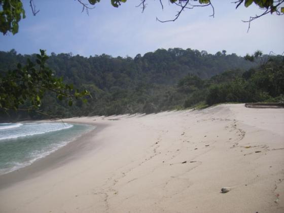 Pantai Sanggar Tulungagung
